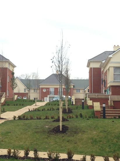 Ashton Bank housing development