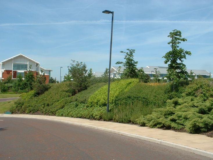 Daresbury Park